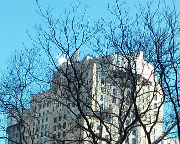 cropped new york skyline smartphone photo